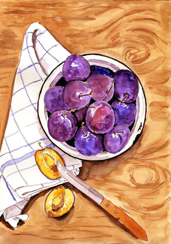 śliwki-ilustracja-akwarela-food-illustration