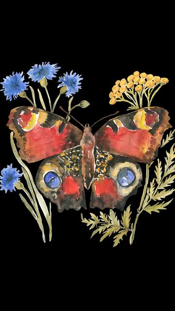motyl tapeta kwiecień